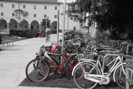 0006fotograffiare-FF-6487